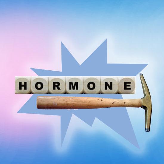 Der Hormonhammer schlägtein
