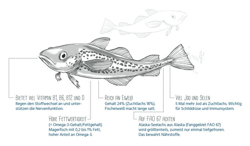Infografik (offen)_Alaska-Seelachs_Nährstoffe